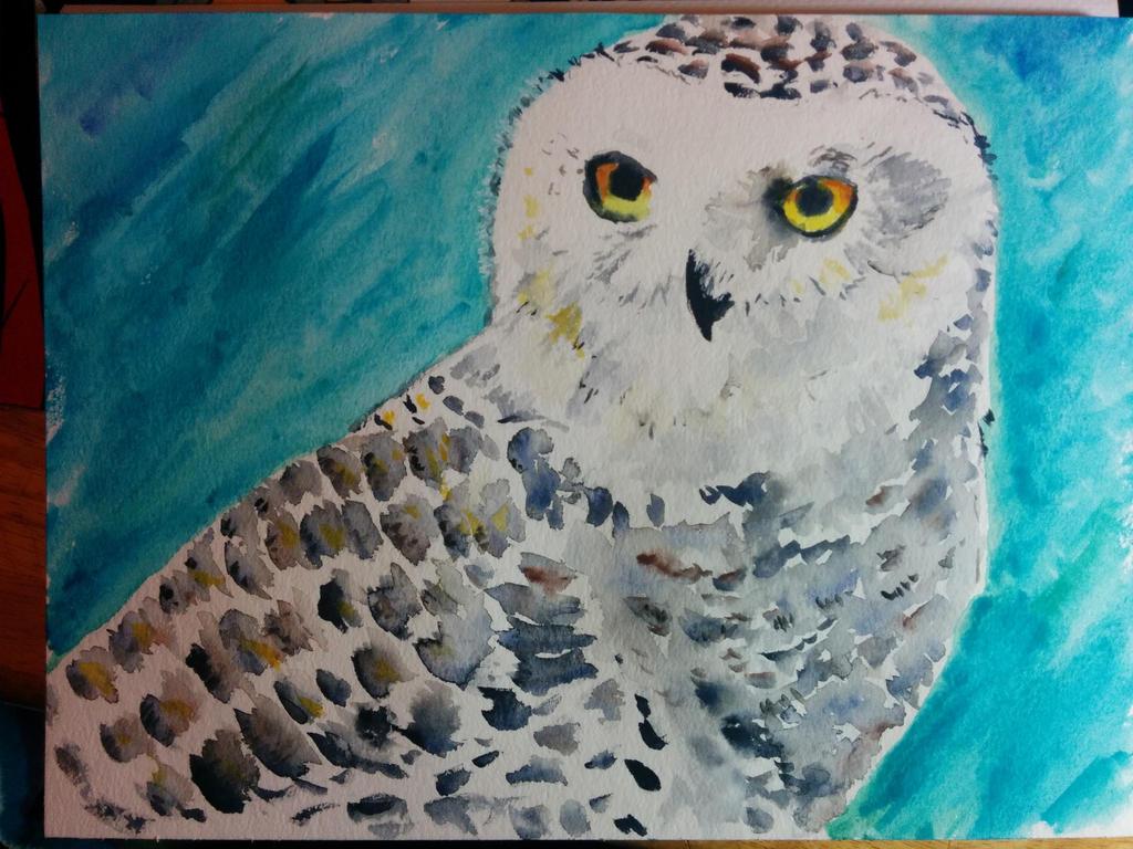 [Watercolor Practice] Owl by Spleko