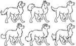 Male Dog: Mix N' Match lines