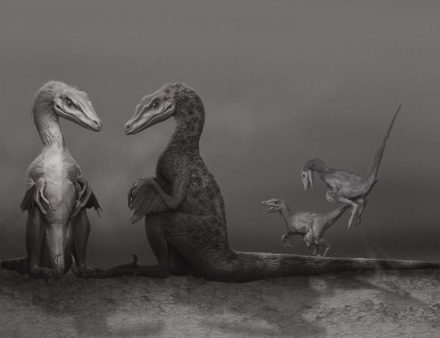 Velociraptor Family Values by ADigitalArtist