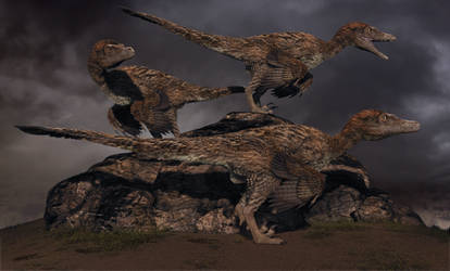 Cretaceous Desert Storm