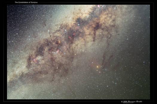 The Constellation of Scorpius