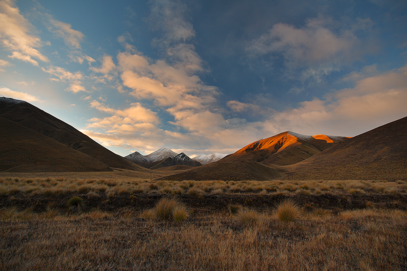 Red Tussock Dusk by octane2