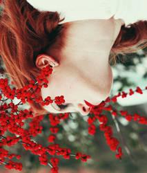 Berries. by CrapperJacks
