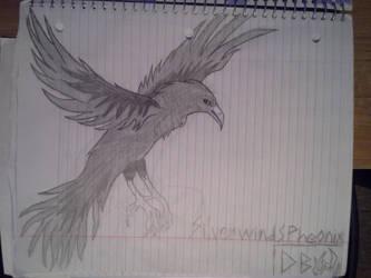 The Raven by SilverwindsPheonix