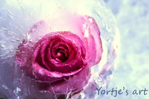 Frozen love by YvdlArt