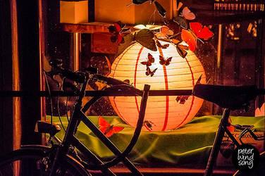 Butterfly Bike by mizarek