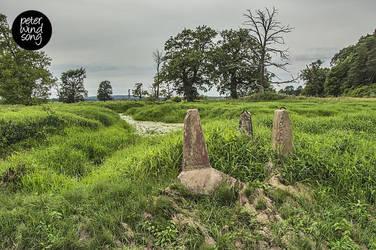 Witch Meadow by mizarek