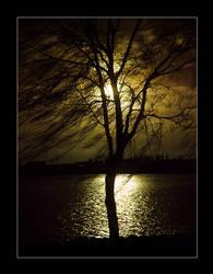 Tree of Apocalypse by mizarek