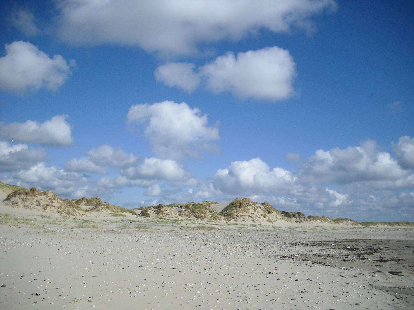 Bright dunes background 1