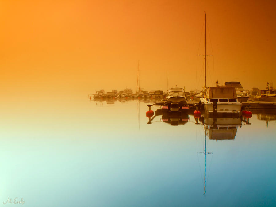 foggy morning II by m-eralp
