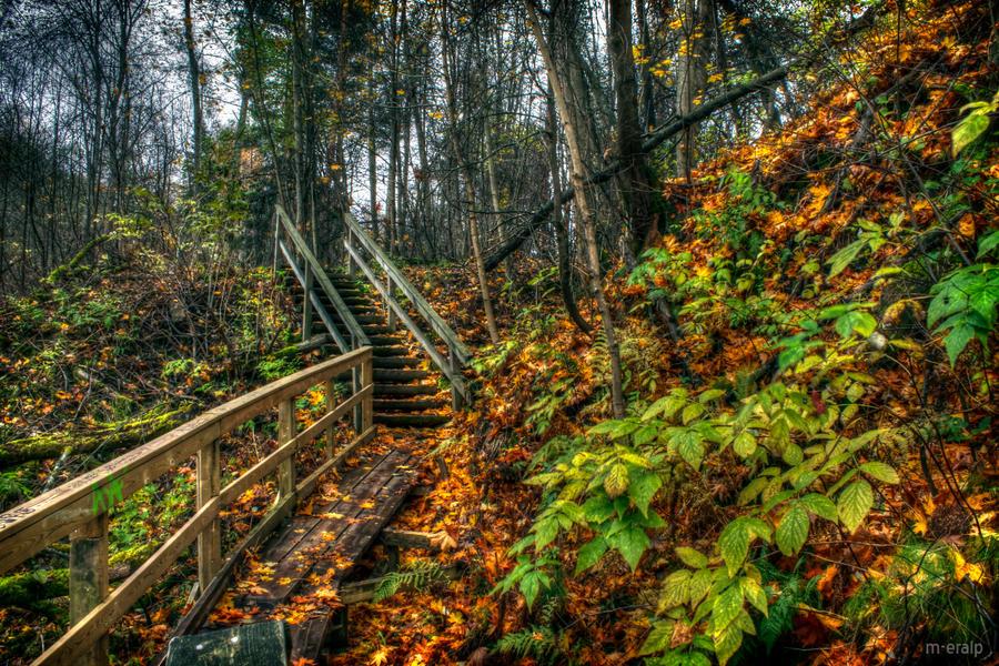 in autumn by m-eralp