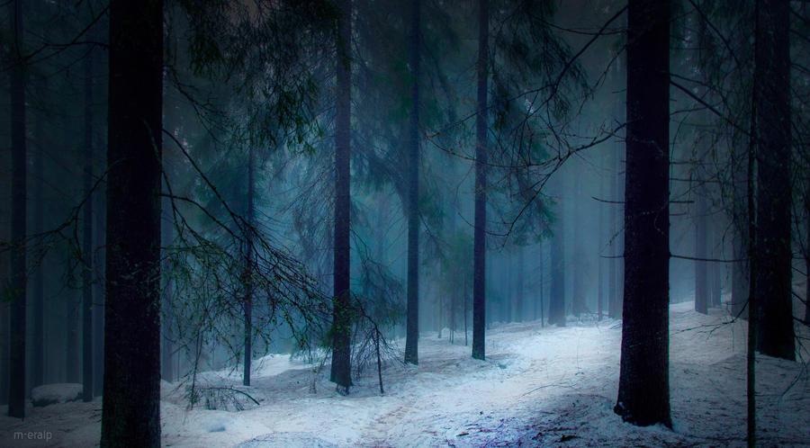 Through shadows and mist by m-eralp
