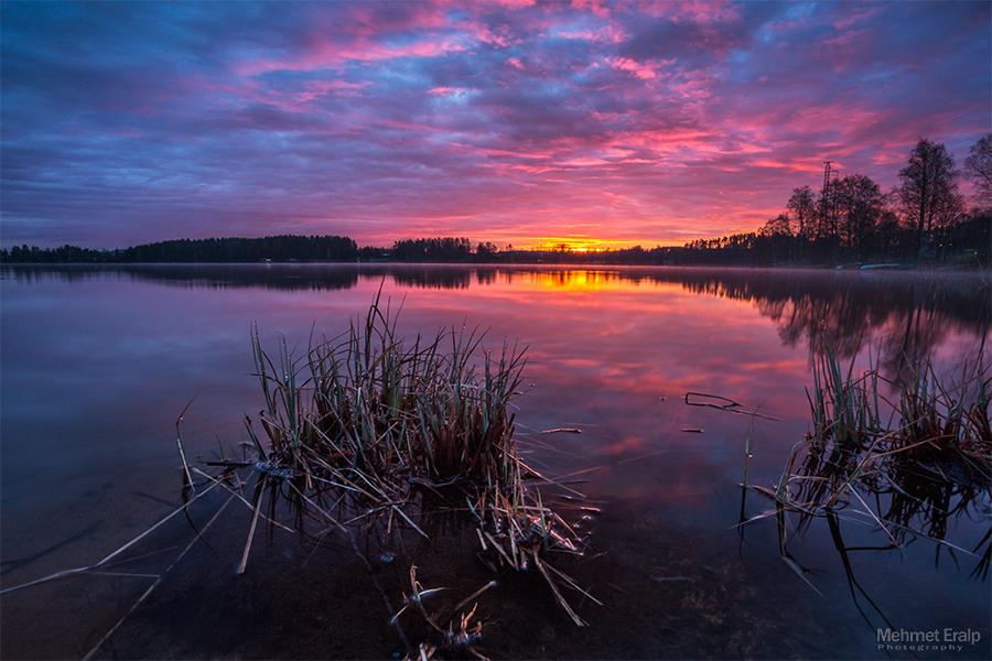 Pink sunrise by m-eralp