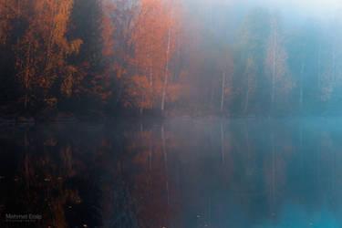 Mirrored autumn