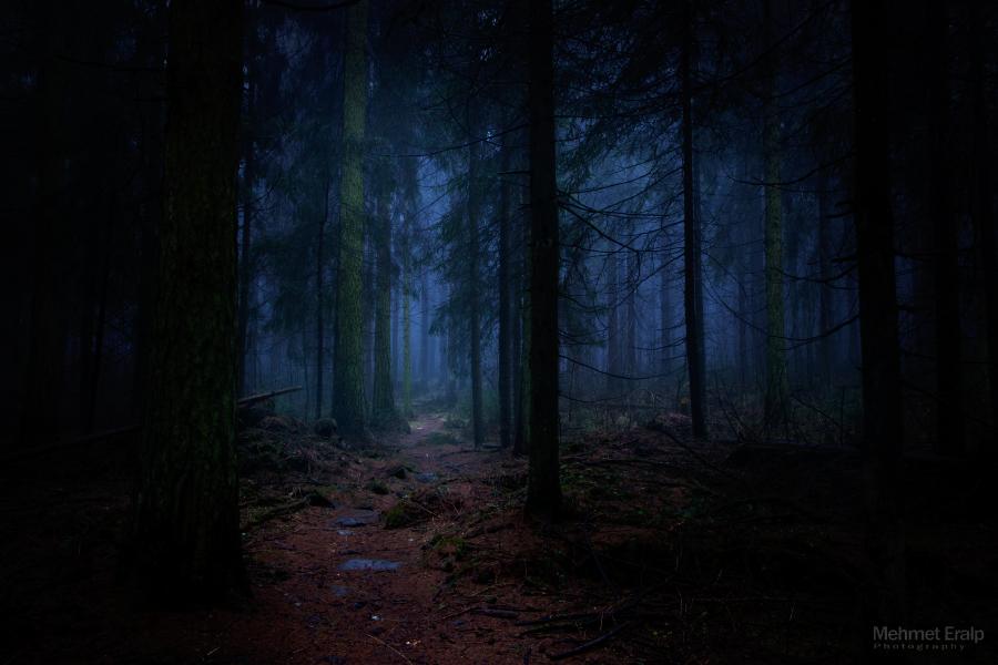 Lost in dark by m-eralp