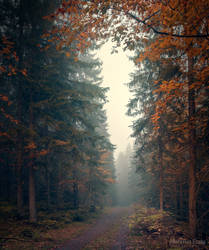 Autumn stories by m-eralp