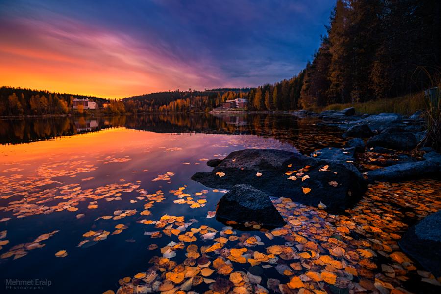 Autumn fire II by m-eralp