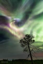 Auroral hurricane