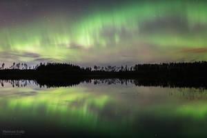 Green Night by m-eralp