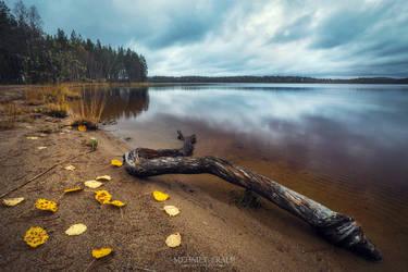 Autumn in Patvinsuo