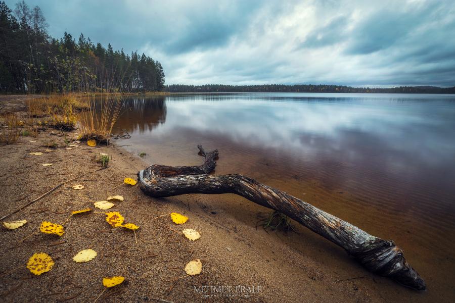 Autumn in Patvinsuo by m-eralp
