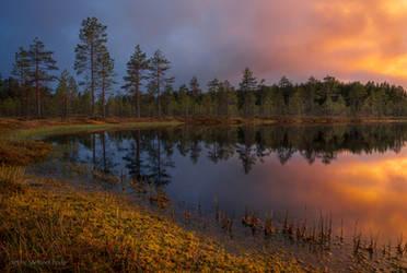 Leivonmaki National Park