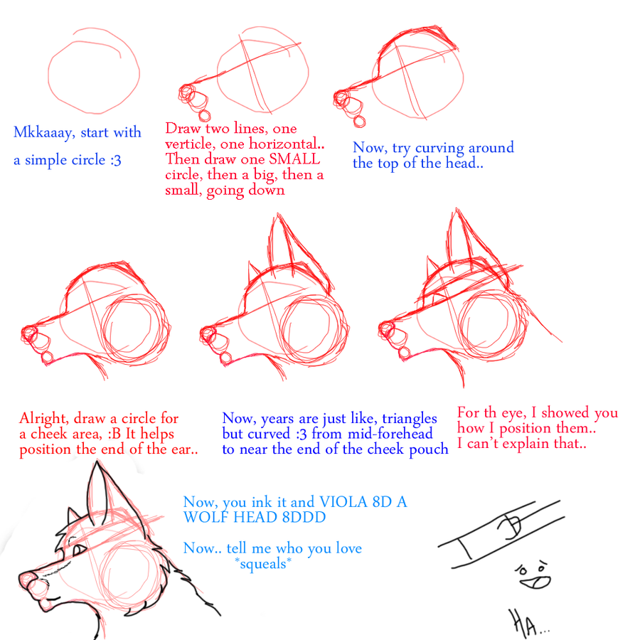 Anthro Wolf Tutorial Wolf Head Tutorial by
