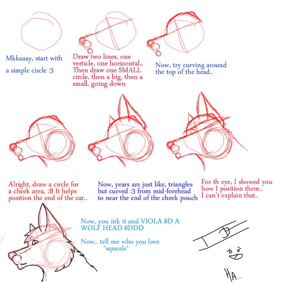 Anthro Wolf Tutorial Wolf Head Tutorial by