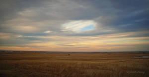 Prairie by Lillith8810