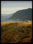 Columbia River Gorge 1