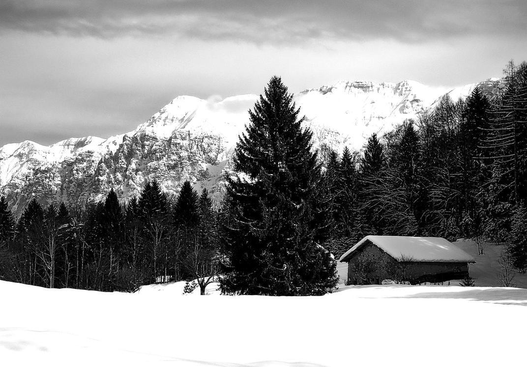 Winterscape by tortagel