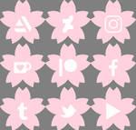 Cherry Blossom Social Media Buttons [f2u]