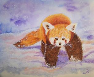 Red Panda by keksimtee