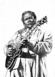B.B. King - Lucille Plays The Blues