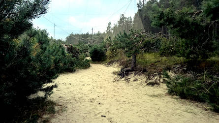 Curonian Spit :October: 2