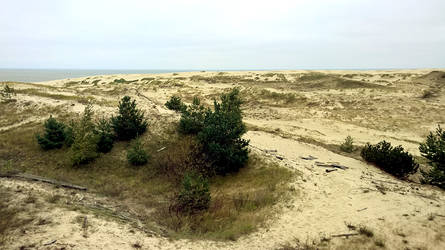 Curonian Spit :October: 8