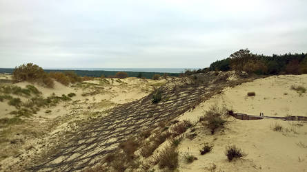 Curonian Spit :October: 9