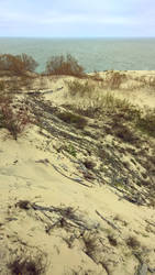 Curonian Spit :October: 10