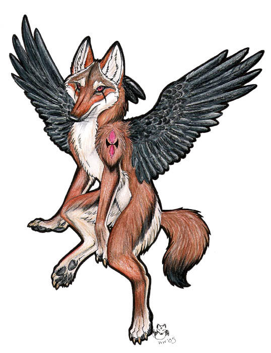 Winged Coyote by neon-possum