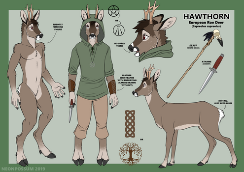 Hawthorn Reference Sheet