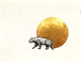 The Bear by seanpt