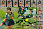 dsForest's Persona4 Chie -Steam Ready