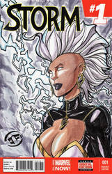 Storm - Sketch Cover in Watercolors