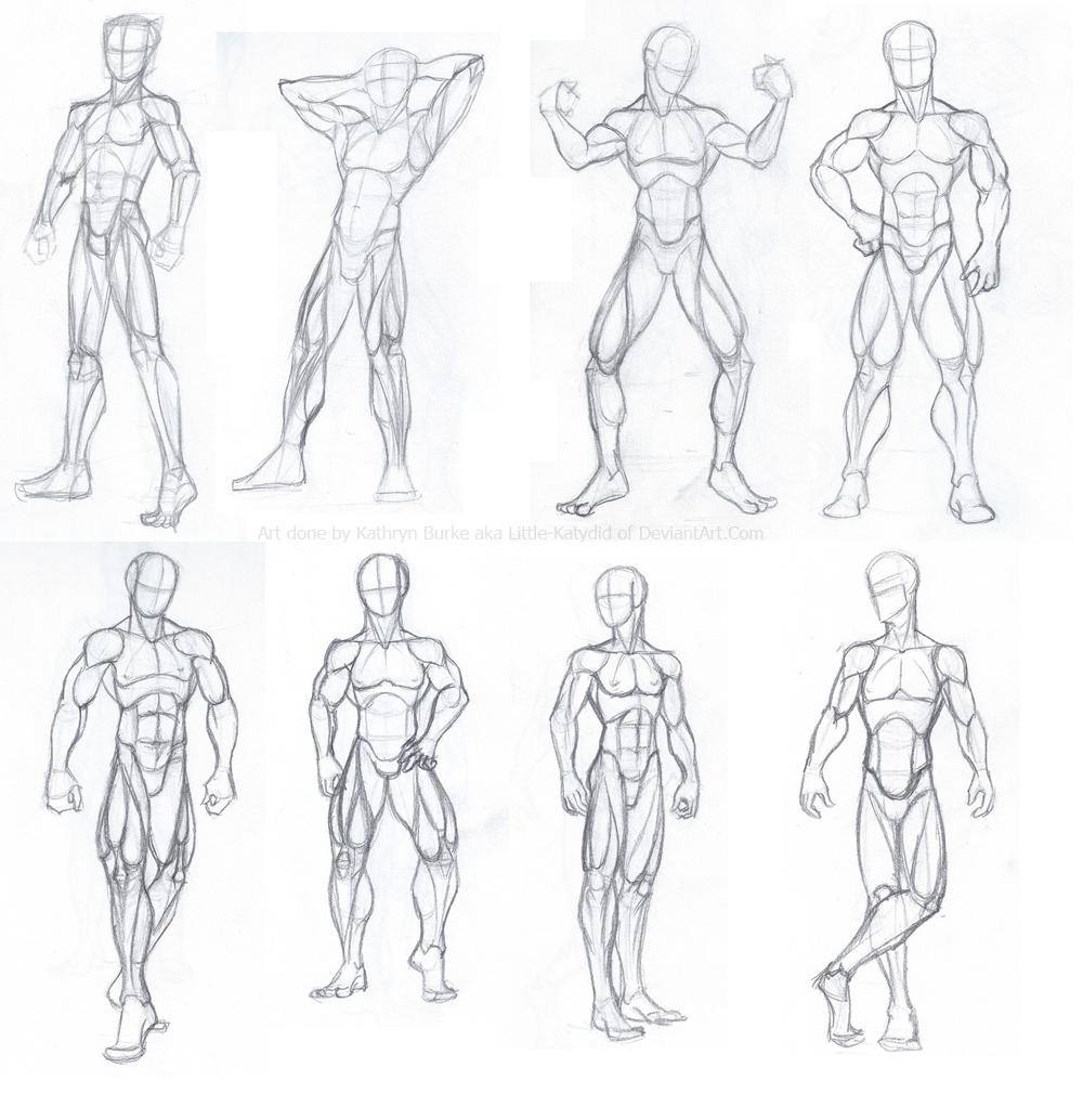 Male Body Studies by Little-Katydid on DeviantArt