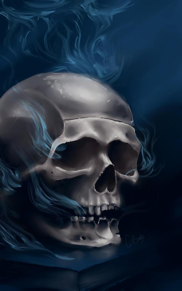 Skull study by GabrielaBorta