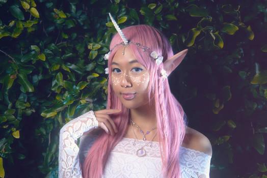 Elf Unicorn Princess