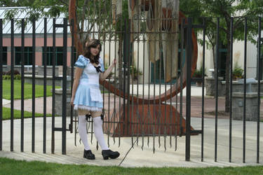 Alice in Wonderland 19 by MajesticStock