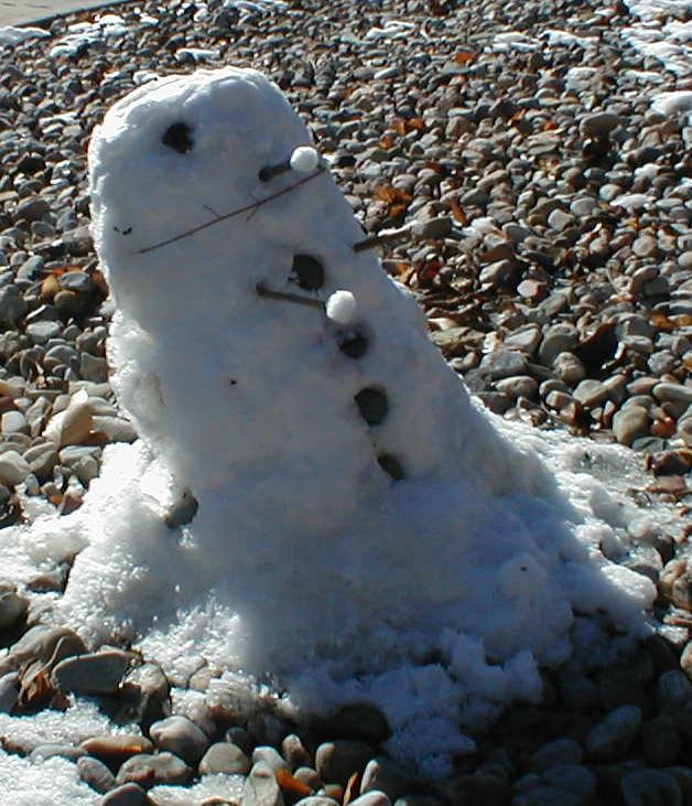 Dalek Snow Sculpture by MoroNoKimi