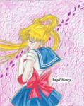 Sailormoon 01