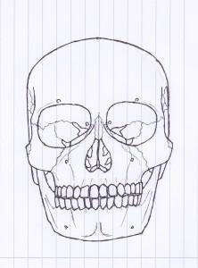 TronheimAdler's Profile Picture